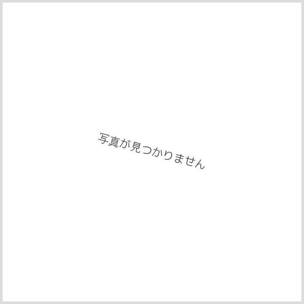 画像1: イコマ商会ペーパーキット 阪神新1000系